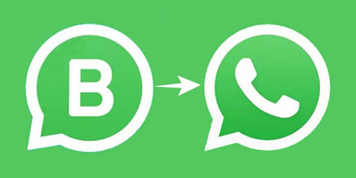 Cambiar de WhatsApp Business a normal sin perder datos