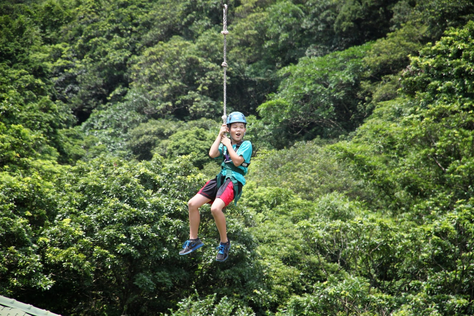 Camp Taiwan review
