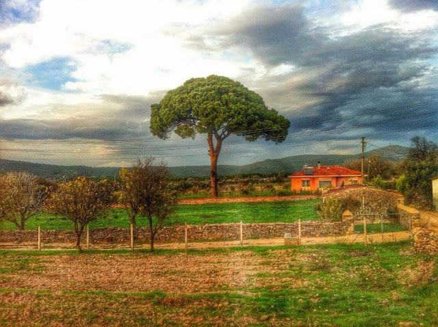 Barbaros Köyü