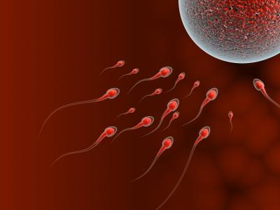 101 eating sperm