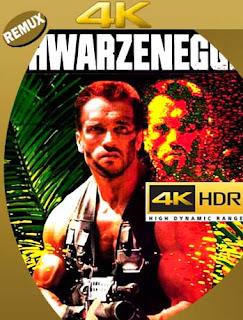 Depredador (1987) 4K REMUX 2160p UHD [HDR] Latino [GoogleDrive]
