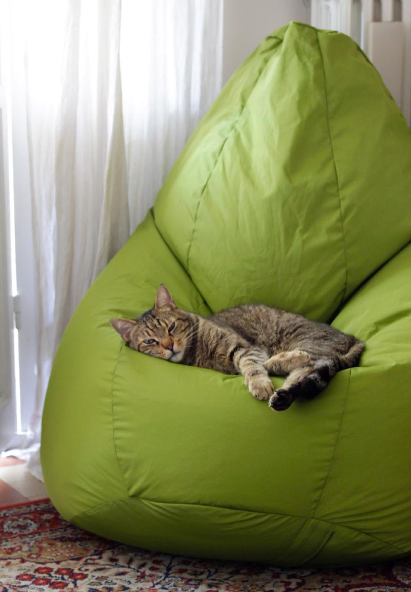 Icone del design: la mitica poltrona Sacco gatto