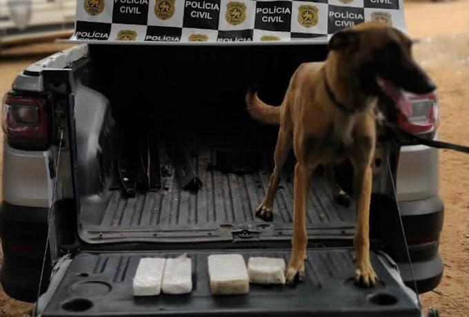 Polícia Civil encontra mais de dois quilos drogas em carro apreendido em Mossoró
