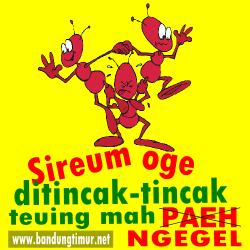 Kata-kata Paribasa Sunda bergambar, Sireum oge ditincak-tincak teuing mah ngegel