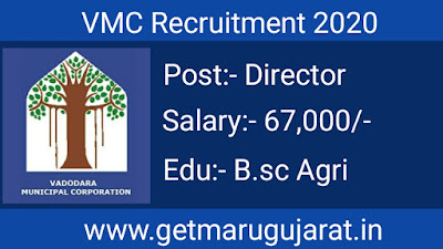 VMC Recruitment, VMC Director Recruitment