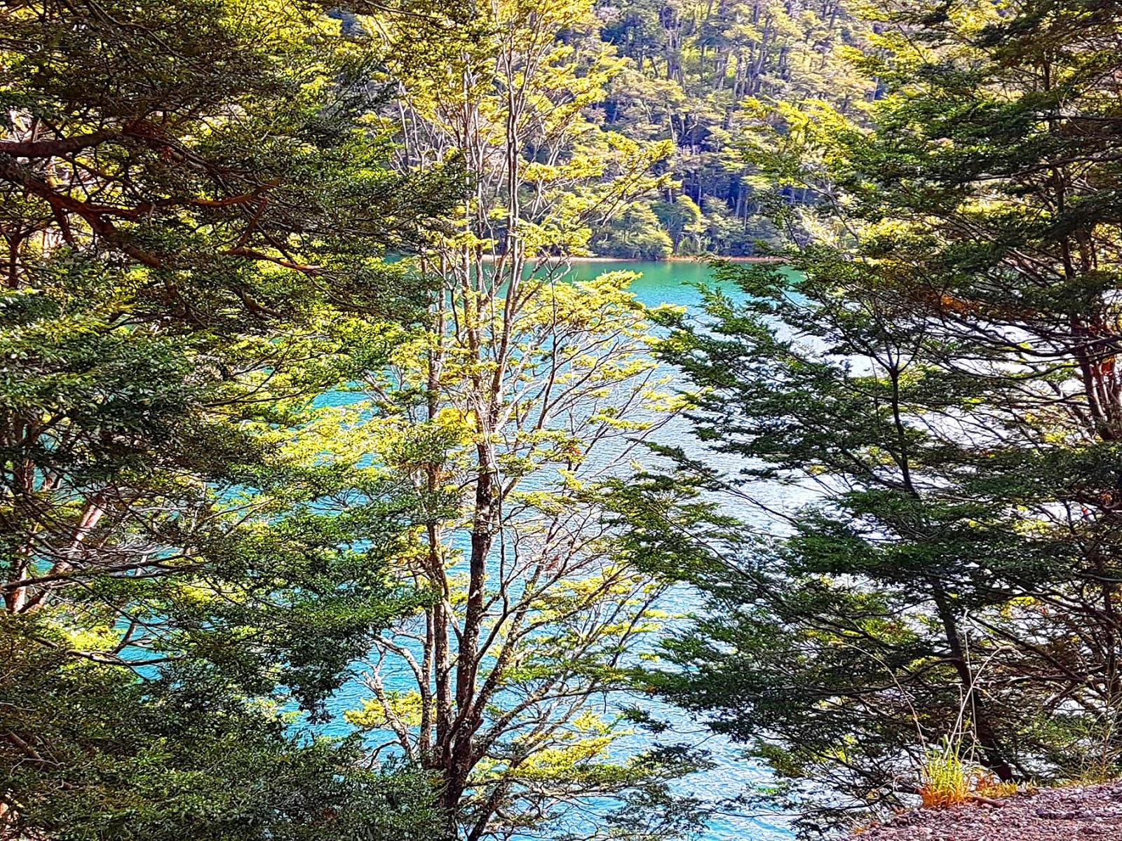 Lago Escondido, Rota dos 7 Lagos, Patagonia Argentina.