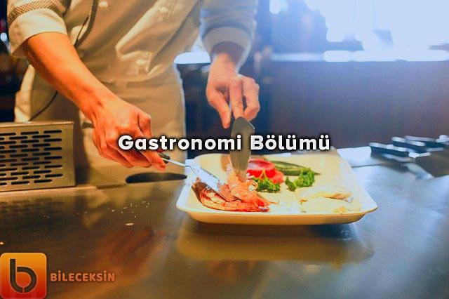 Gastronomi ve Mutfak Sanatları Bölümü: Nedir?, Dersleri, İş İmkânları ve Maaşı