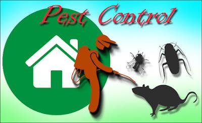 pest control vencouver
