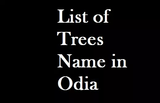 List of Trees Name in Odia | Trees name list English to Odia