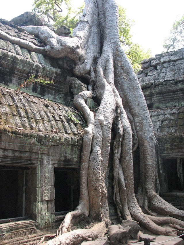 COVID-19: Cambodia Reopens For Foreign Visitors With Insane Fees Policy Entry Requirements