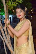 Yamini Bhaskar sizzling in saree-thumbnail-1