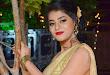 Yamini Bhaskar at Titanic Audio launch
