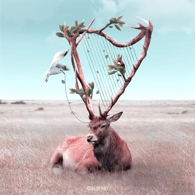 sừng hưu với cây đàn harp trứ danh
