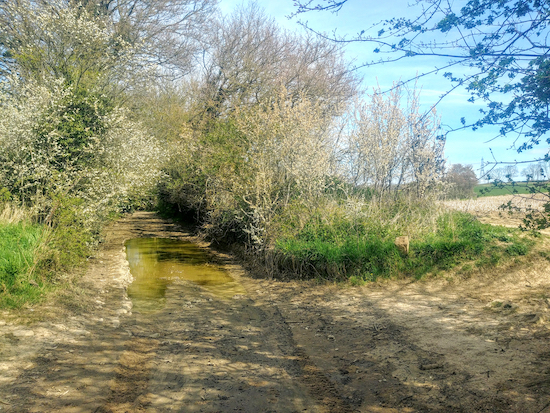 The point where the track can be waterlogged - see detour option below