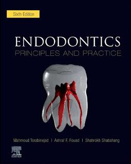 Endodontics Principles and Practice 6th Edition