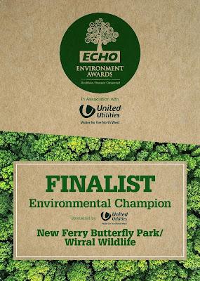 Echo Award Finalist Certificate