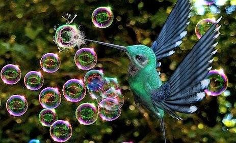 Brisons les bulles (image d'illustration)