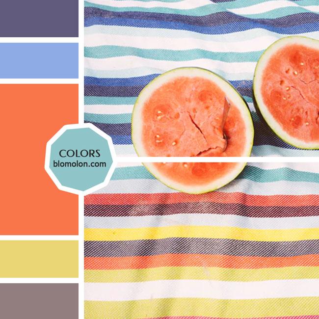 variedad_en_color_moodboard_26