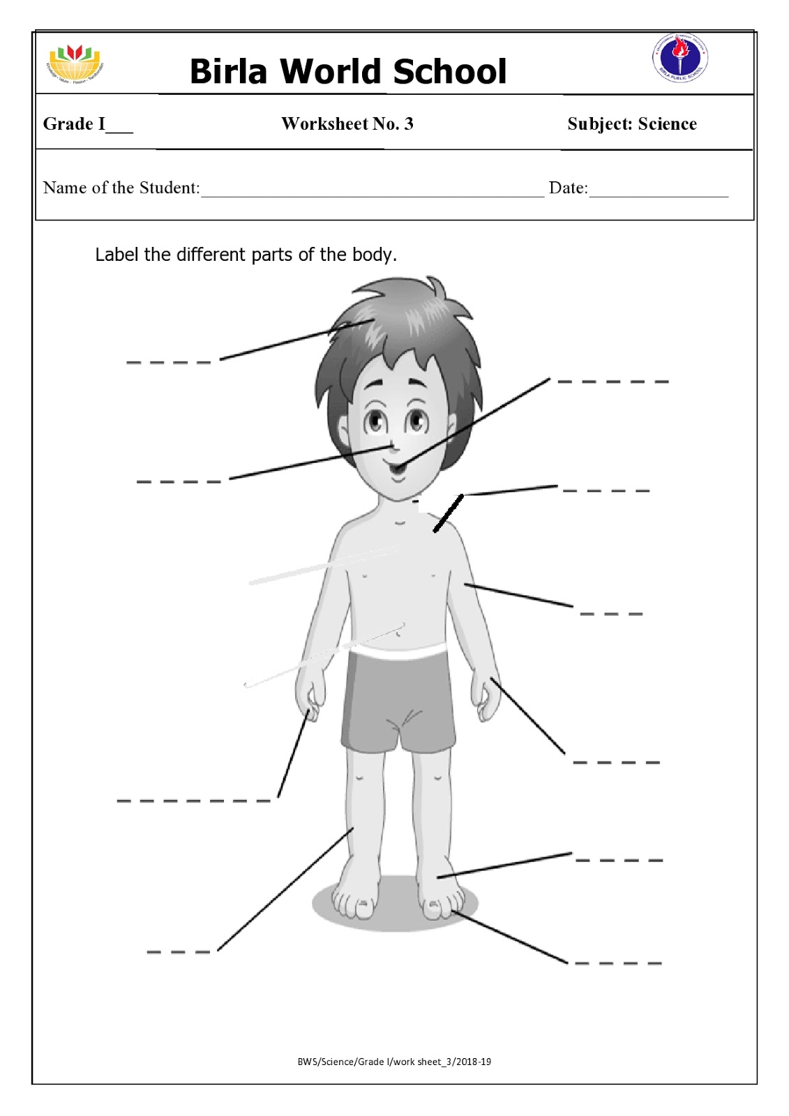 Worksheet My Body Grade 1   Printable Worksheets and Activities for  Teachers [ 1600 x 1131 Pixel ]