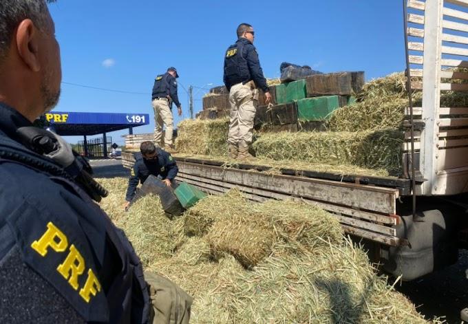 PRF apreende 3 toneladas de maconha em carga de feno e dá prejuízo de 5 milhões ao crime organizado