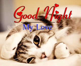 Latest Beautiful Good Night Wallpaper Free Download %2B23
