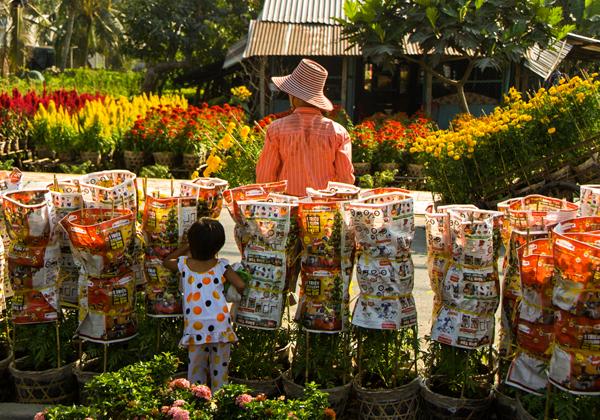 Nhà vườn tại làng hoa Sa Đéc