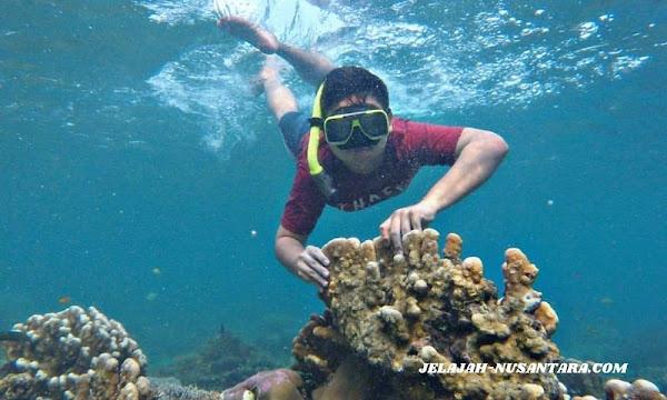 akomodasi open trip pulau pari murah