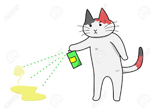 cat spraying