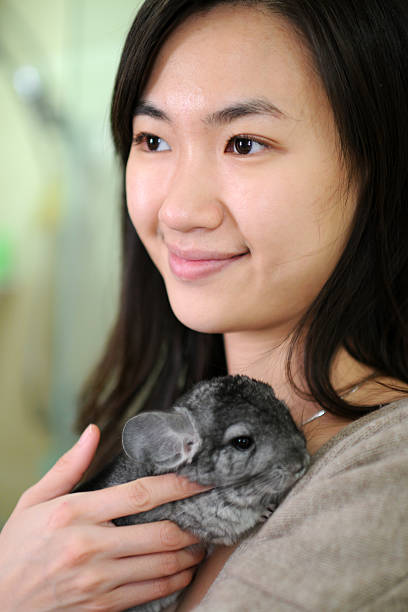 Chinchilla Pet Sitter – How to Find a Good One