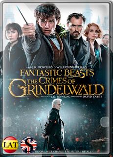 Animales Fantásticos: Los Crímenes de Grindelwald (2018) FULL HD 1080P LATINO/INGLES