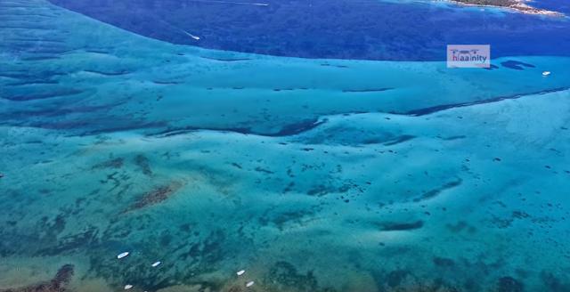 """""""Η θάλασσα με τα παγωμένα κύματα"""" (βίντεο)"""