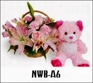 NWB-A6