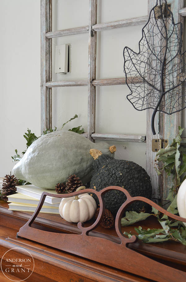 Use books with squash, pumpkins, and pinecones to create a unique fall display.  |  anderson and grant