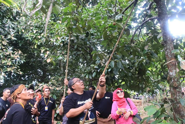 Festival Manggis Cicantayan berakhir dimeriahkan pentas seni budaya tradisional