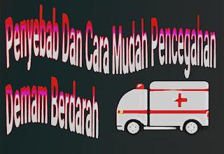 Gejala Dan Cara Pencegahan Demam Berdarah