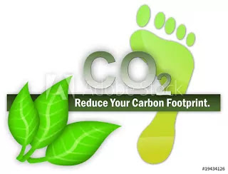 Carbon Footprint Definition, Causes, Effects & Solutions