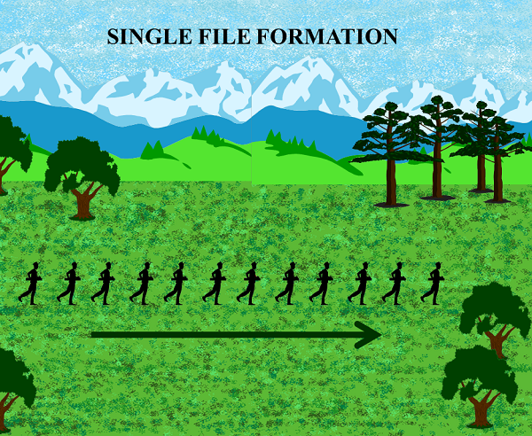 Single File Formation