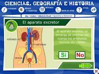 http://recursostic.educacion.es/primaria/alquimia/web/b/00/animaciones/a_fb05_04.html