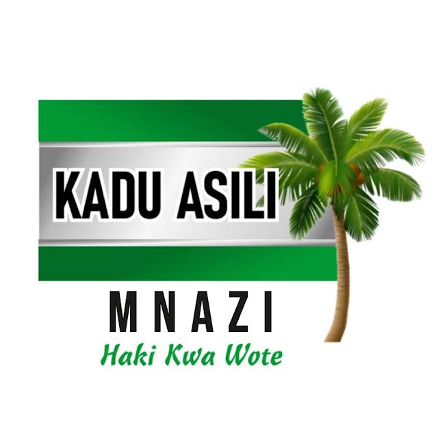 Malindi MP Aisha Jumwa KADU ASILI vehicle