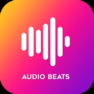 Music Player v4.1.0 build 4105 Paid APK