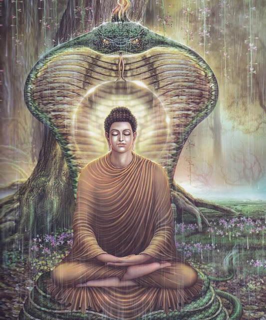 Phần VIII - QUY Y NƯƠNG TỰA - GIÁO TRÌNH PHẬT HỌC - Đạo Phật Nguyên Thủy