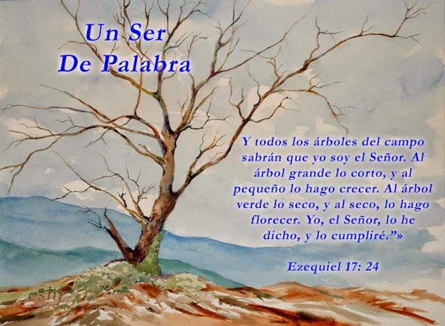Resultado de imagem para ezequiel 17::24
