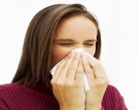 Como evitar los ácaros del polvo