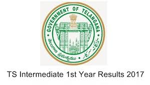 TELANAGANA INTERDIATE FIRST YEAR RESULTS