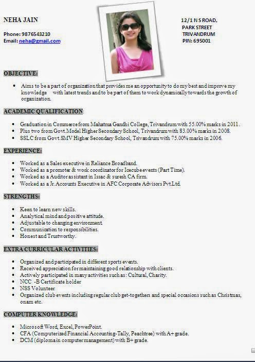 Resume Format For It Freshers Doc Resume Resume Formats Select The Best  Professional Resume Format B  New Resume Formats