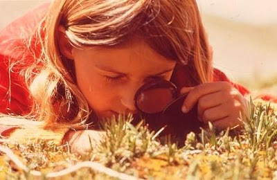 Young woman looking at blades of grass through magnifying glass