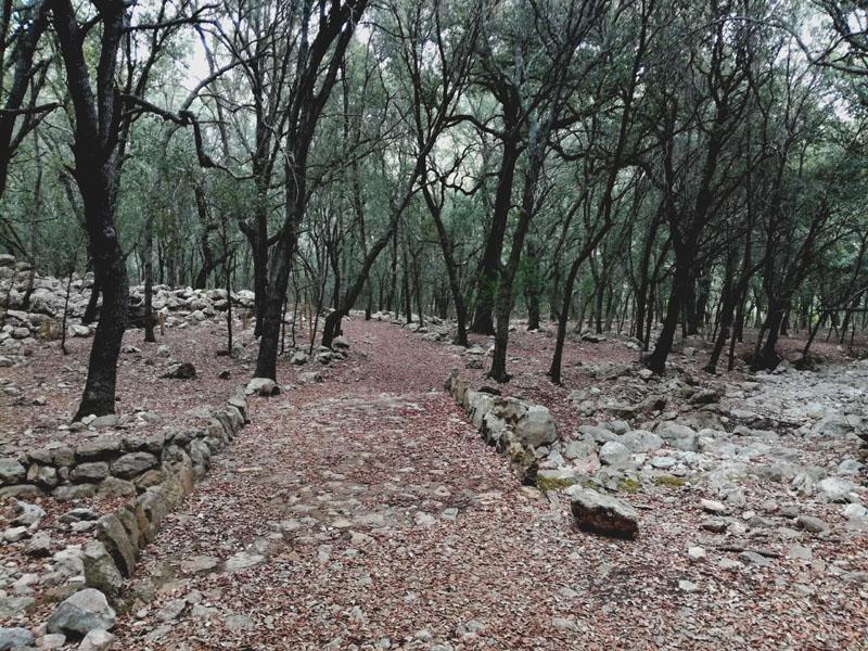 Foto: Fonts Ufanes - Mallorca