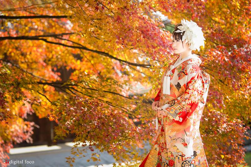 誰もが自然に美しく撮影できます。紅葉のベストな時期は短いのでご予約はお早めに