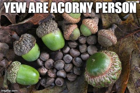 Yew are acorny person.