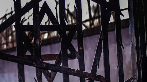 Felfedeztek egy fotógyűjteményt a lengyelországi zsidóság megsemmisítésére indított náci műveletről